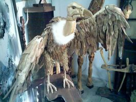 Vulture: Finished by Thomas-Carvings