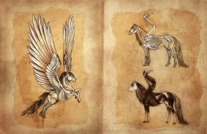 Pegasus Anatomy by Equal-Night
