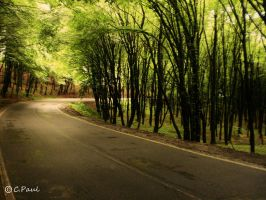 Road of freedom 2 by paully93