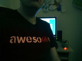Shirt of Awesome by pickassoreborn