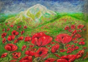 Valley of the sun and poppys by LilithDarck