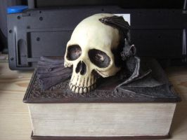 Book Bat Skull by Stock-Karr