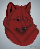 Drecka Red Wolf by NatsumeWolf