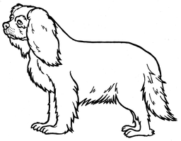 King Charles Spaniel Lineart by HannahLouLou