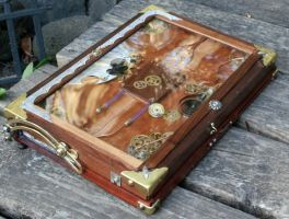 The steampunk laptop by mateo4x4