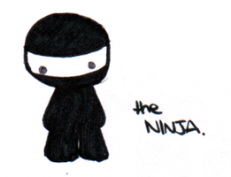 the ninja. by Panique
