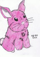 This Bunny is PINK by aramintaXkazemaru