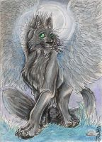 Shady ACEO Trade by Eviecats