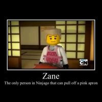 Ninjago-Zane Demotivational Poster by person282