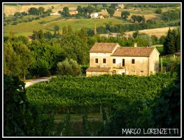 SAN PAOLO DI JESI (AN) - A PIECE OF COUNTRYSIDE by MarcoLorenzetti