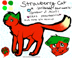 Strawberry Cat Reference by foxyko