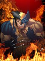 Wolverine by joingaramo17