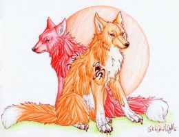 .:Wolf-Fox sisters:. by WhiteSpiritWolf