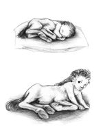 Newborn and baby centaur by Batri