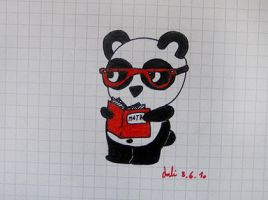panda and maths by lili-cherry-blossom
