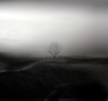 Distant by intao