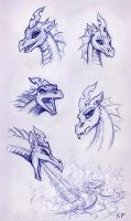Dragon Chrysalis Portraits by KP-ShadowSquirrel