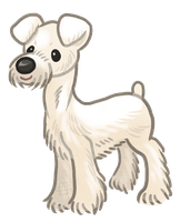 White miniature Schnauzer by griffsnuff