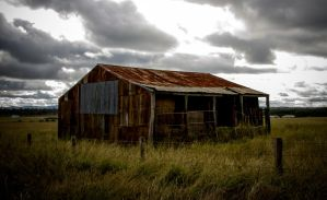 Old Hay Shed by droy333