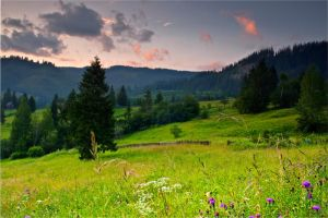 Evening Bucovina 2 by lica20
