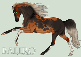 Baliro Import Adult by EquineInc