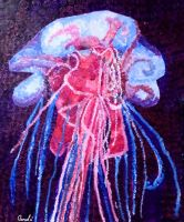 Jellyfish by Sarel