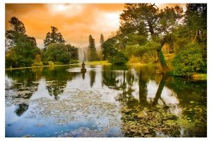 Powerscourt gardens 3 by aniabeata