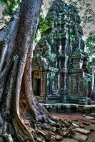 Ta  Prohm 7 by CitizenFresh