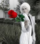 Red rose by Cosmic-Empress