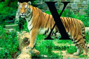 OSx tiger by airforce1129