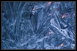 Ice II by MillerTime30
