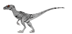 Velociraptor Sornaensis female by BrooksLeibee