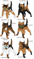 Warrior cat adoptables 29 by Shadowpaw909