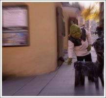 Shrek in old town. by k2ff