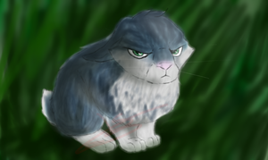 Bunnymund by OUO-AlEx-OUO