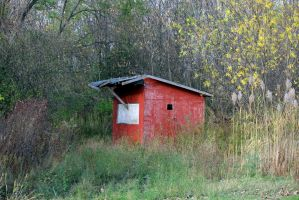 The little red shed. by sweatangel