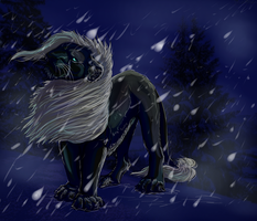 Winter and Ghost. by Arjello