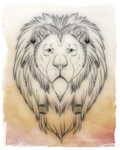 Lion by bladebandit