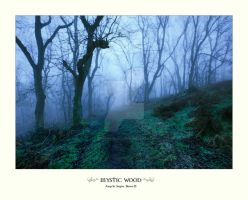 Mystic Woods by ArwensGrace