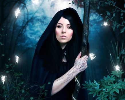 Witchcraft woods by theancientsoul