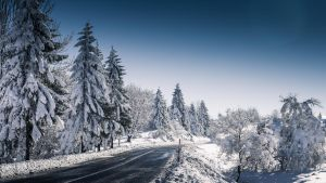 winter HD by damirarapovic