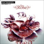 The Rose Typography by RehanKhan