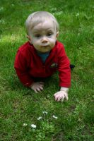 Baby in the Grass 7 by ArtistStock