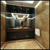 Bathroom project pt1 by pressenter