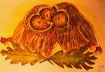 Couple of Owls by julbba
