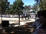 Ren Faire 2011 by micropixel