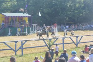 King Richard's Fair, Jousting To Hit the Target by Miss-Tbones