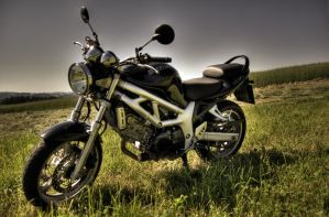 suzuki sv650 no.3 by Tschisi