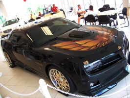 2010 Trans Am_II by DetroitDemigod