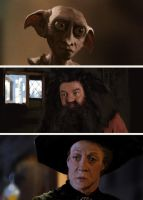 Dobby Hagrid and McGonagall by ClintCearley